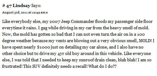 Jeep Commander floods door